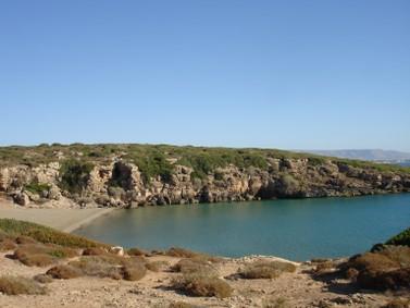 Foto spiaggia calamosche